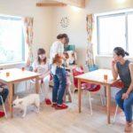 【空き家】5LDK以上の一軒家なら、シェアハウスの方が収益が上がる?