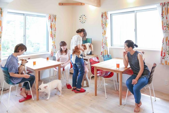 【空き家】5LDK以上の一軒家ならシェアハウスの方が収益が上がる?